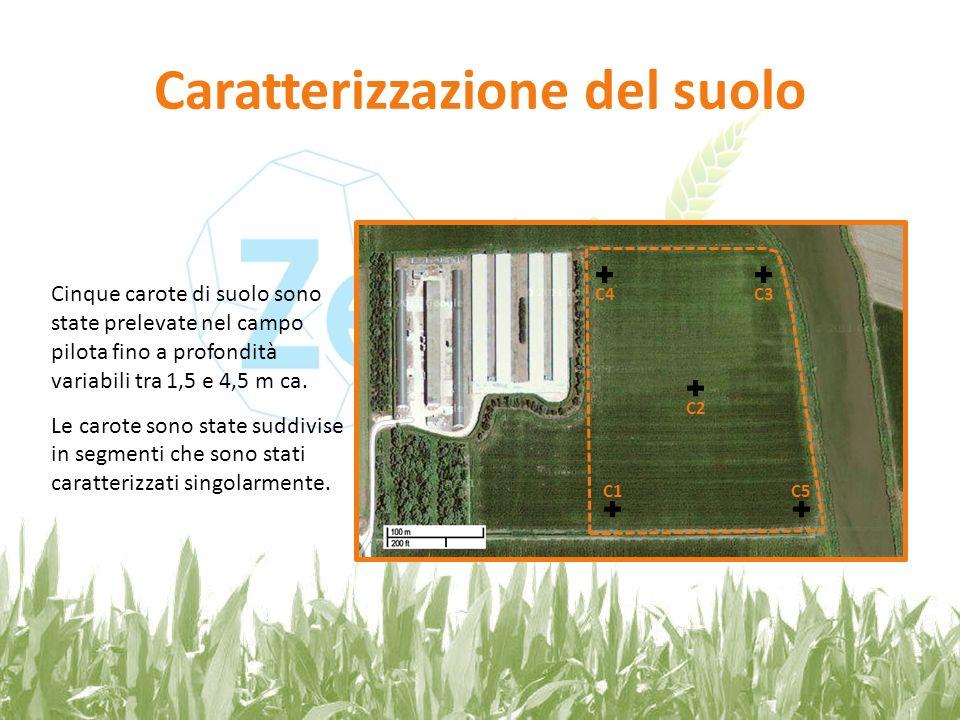 Caratterizzazione del suolo