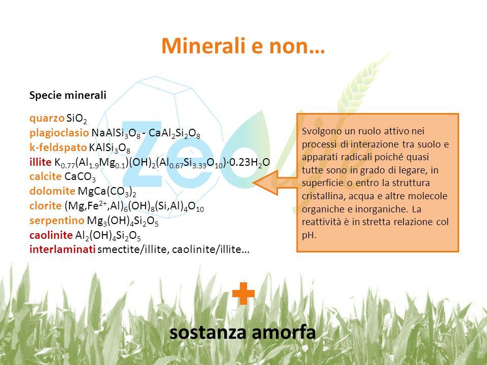 Minerali e non… sostanza amorfa Specie minerali quarzo SiO2