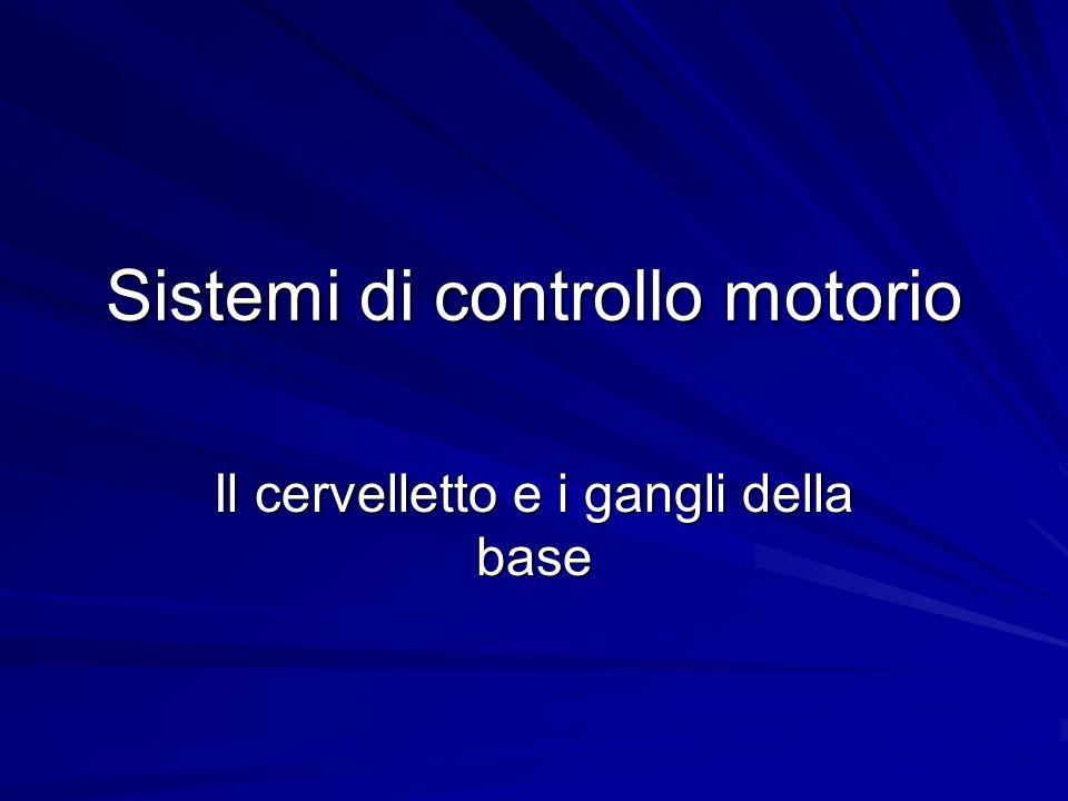 Sistemi di controllo motorio