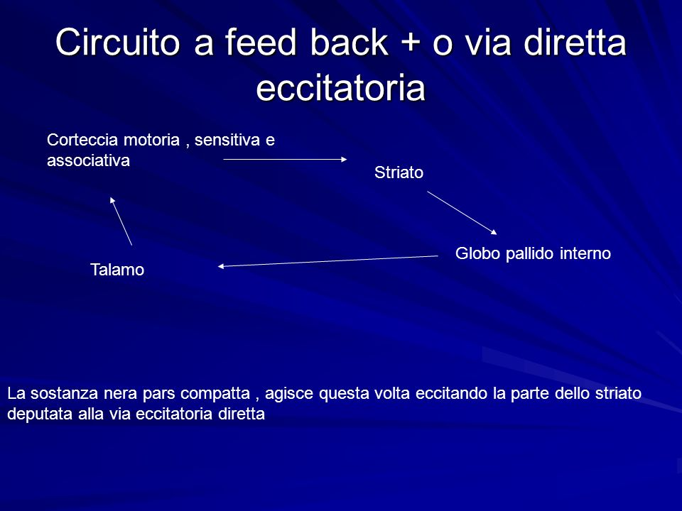 Circuito a feed back + o via diretta eccitatoria