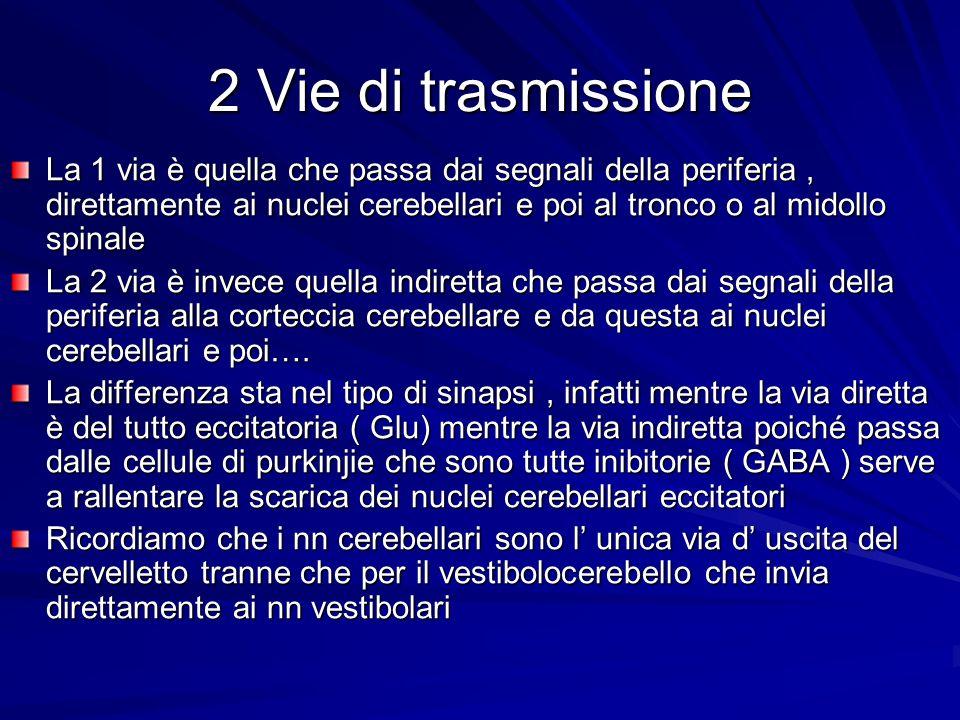 2 Vie di trasmissione