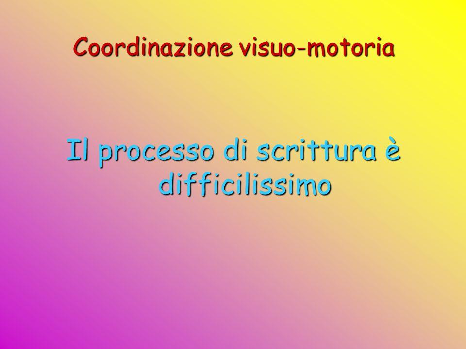 Coordinazione visuo-motoria