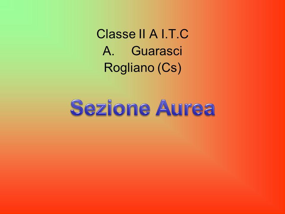 Classe II A I.T.C Guarasci Rogliano (Cs) Sezione Aurea
