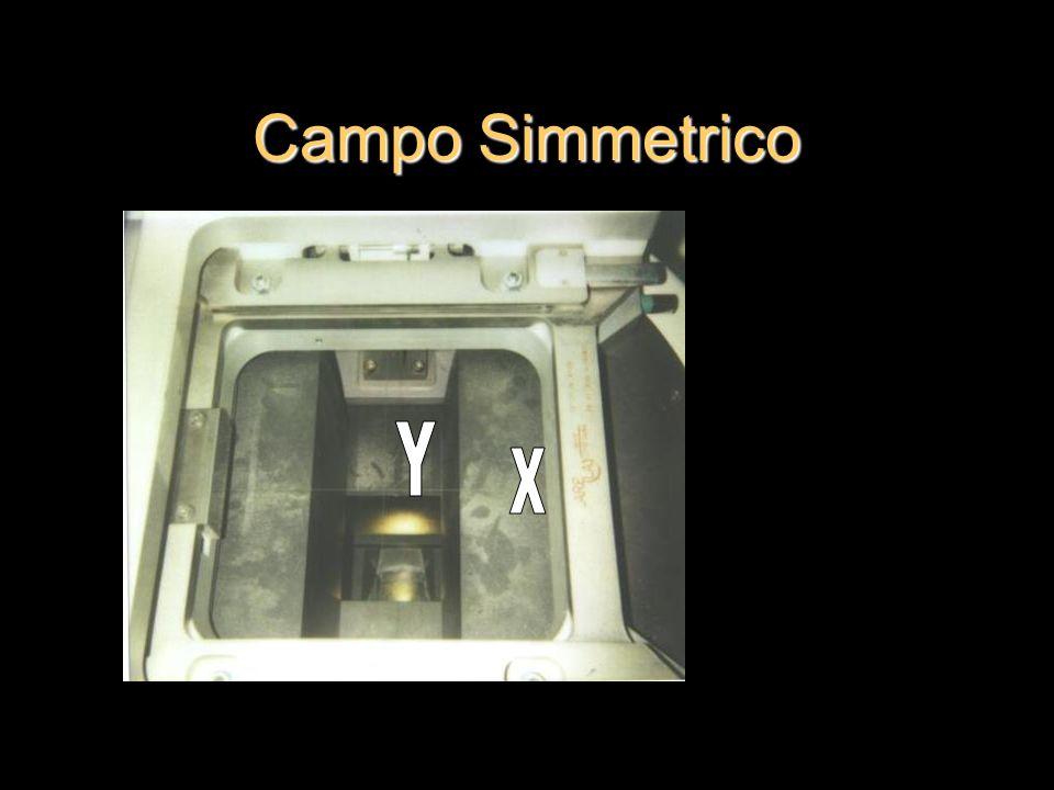 Campo Simmetrico Y X