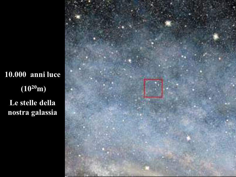 Le stelle della nostra galassia