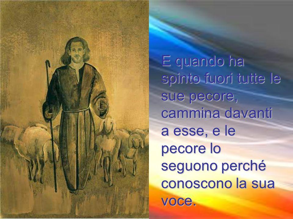E quando ha spinto fuori tutte le sue pecore, cammina davanti a esse, e le pecore lo seguono perché conoscono la sua voce.
