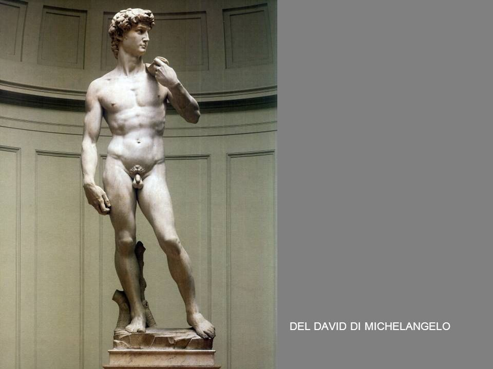 DEL DAVID DI MICHELANGELO