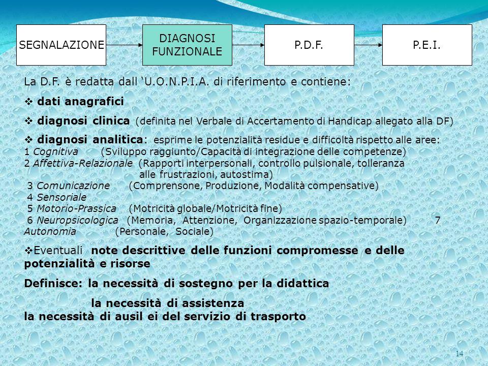 La D.F. è redatta dall 'U.O.N.P.I.A. di riferimento e contiene: