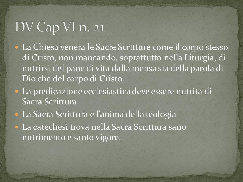 DV Cap VI n. 21