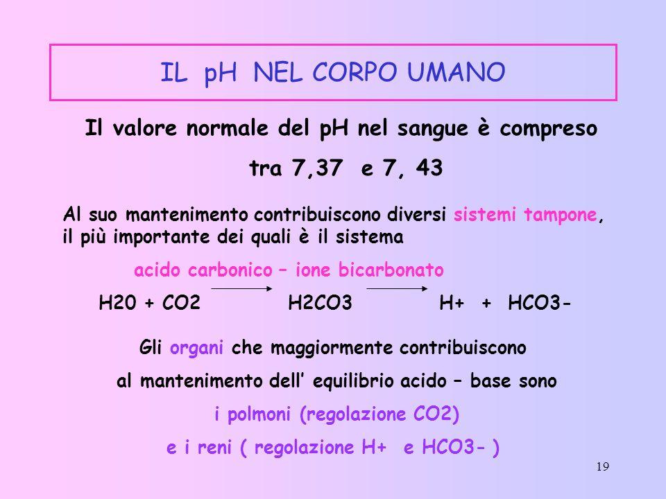 IL pH NEL CORPO UMANO Il valore normale del pH nel sangue è compreso