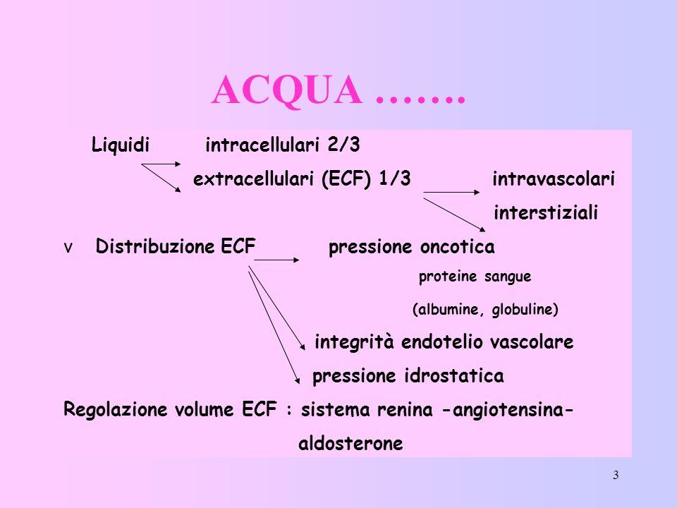 ACQUA ……. Liquidi intracellulari 2/3
