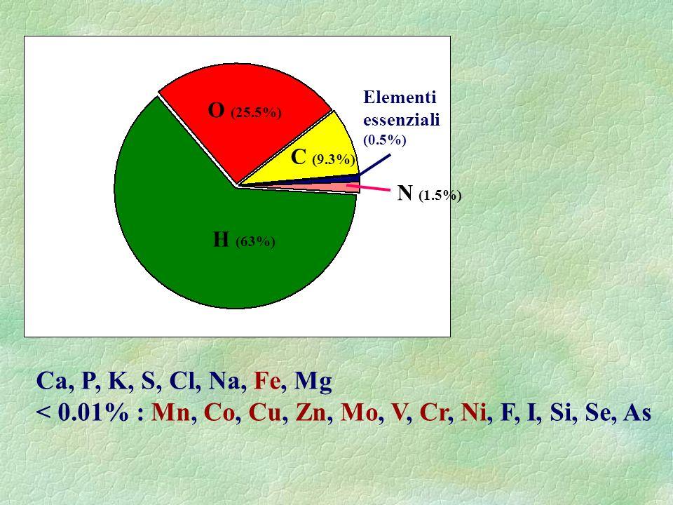 < 0.01% : Mn, Co, Cu, Zn, Mo, V, Cr, Ni, F, I, Si, Se, As