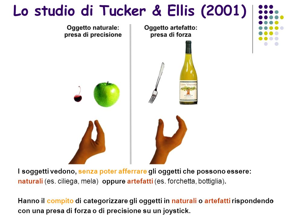 Lo studio di Tucker & Ellis (2001)