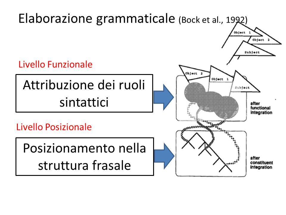 Elaborazione grammaticale (Bock et al., 1992)