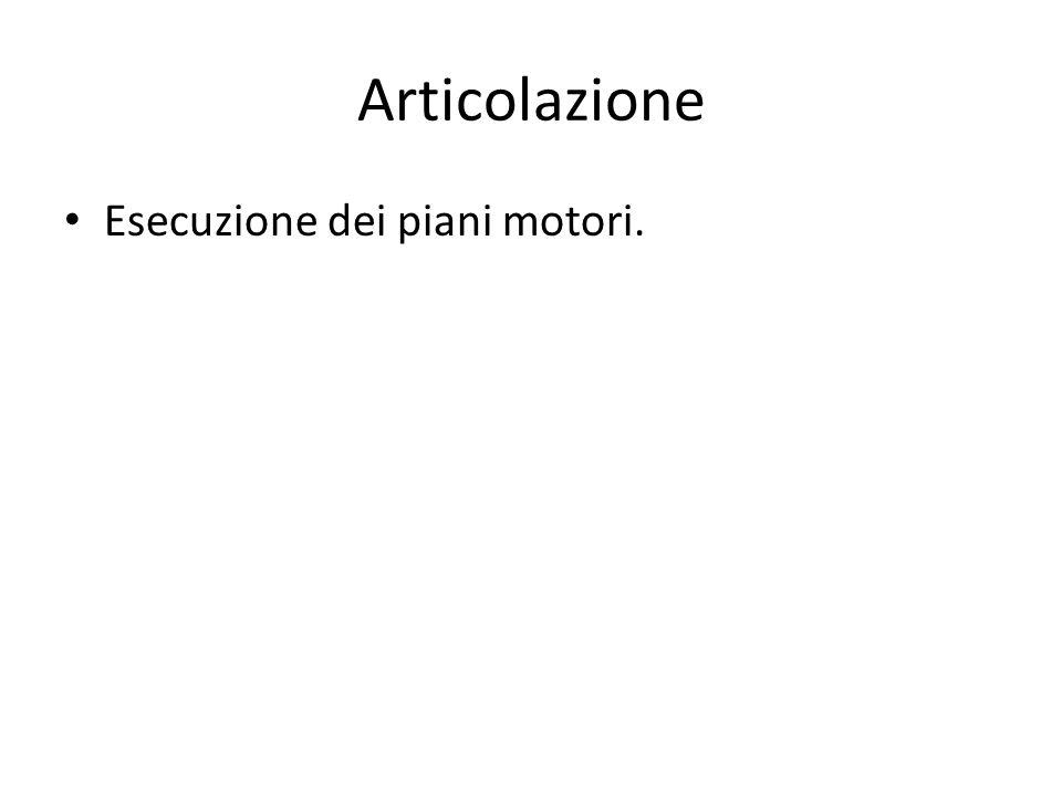 Articolazione Esecuzione dei piani motori.