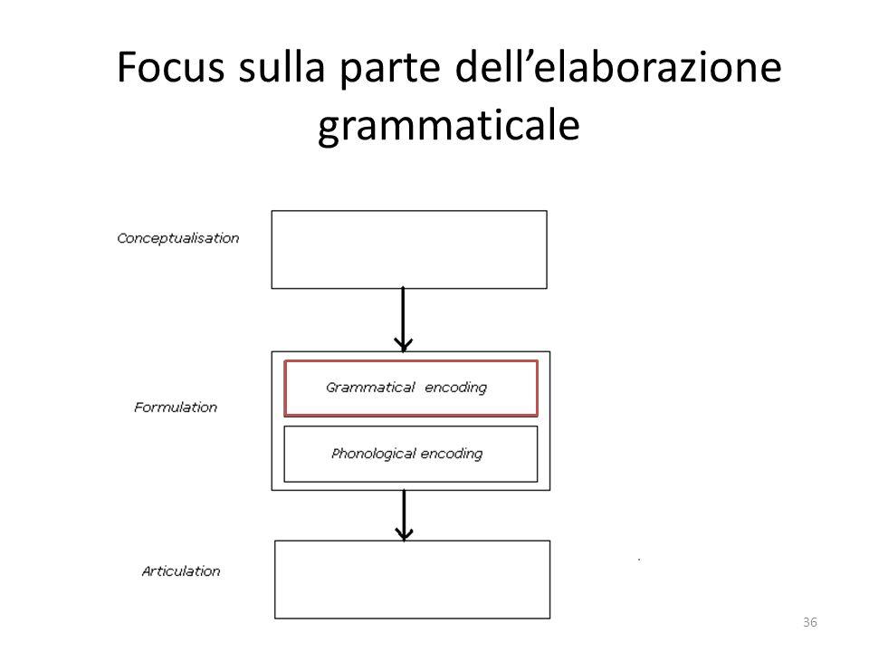 Focus sulla parte dell'elaborazione grammaticale