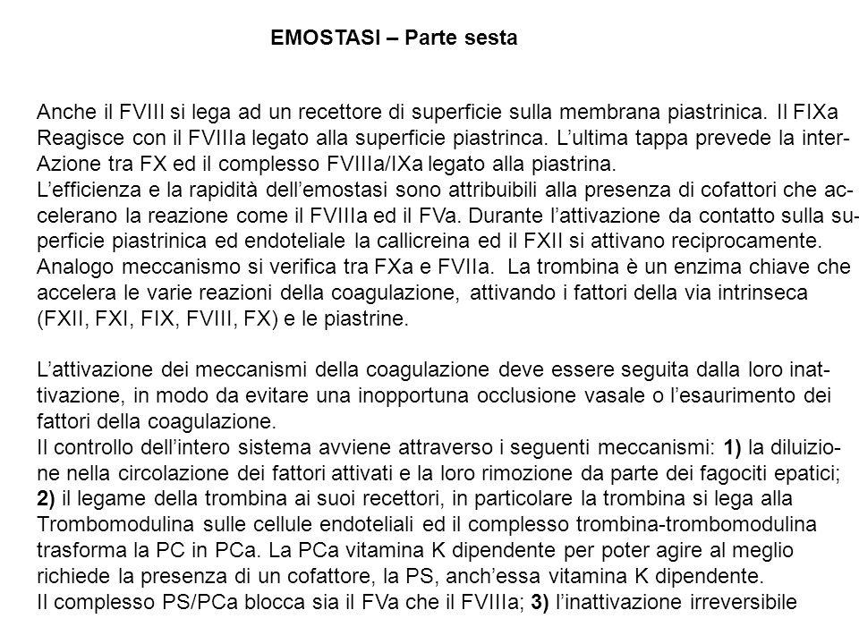 EMOSTASI – Parte sesta Anche il FVIII si lega ad un recettore di superficie sulla membrana piastrinica. Il FIXa.