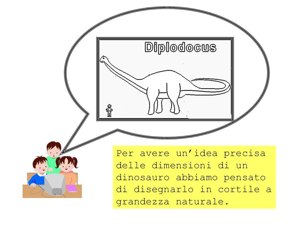 Per avere un'idea precisa delle dimensioni di un dinosauro abbiamo pensato di disegnarlo in cortile a grandezza naturale.