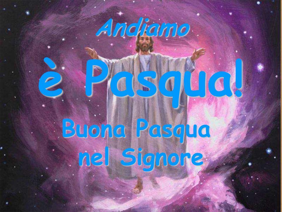 Andiamo è Pasqua! Buona Pasqua nel Signore