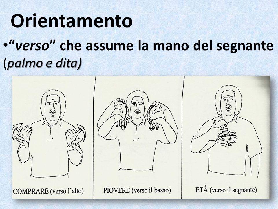 Orientamento verso che assume la mano del segnante (palmo e dita)
