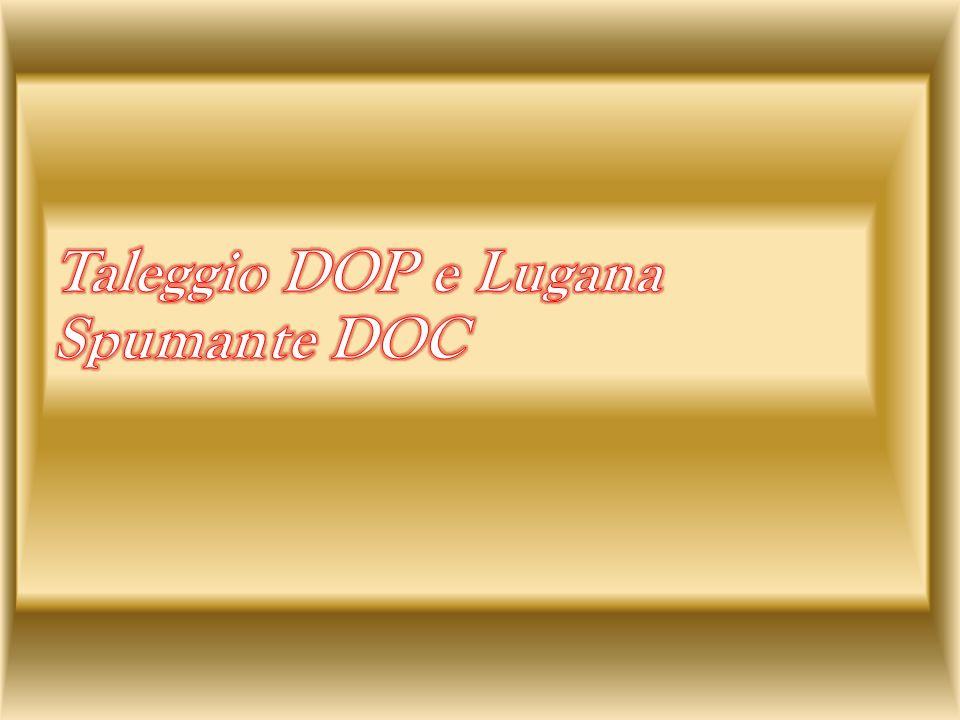 Taleggio DOP e Lugana Spumante DOC
