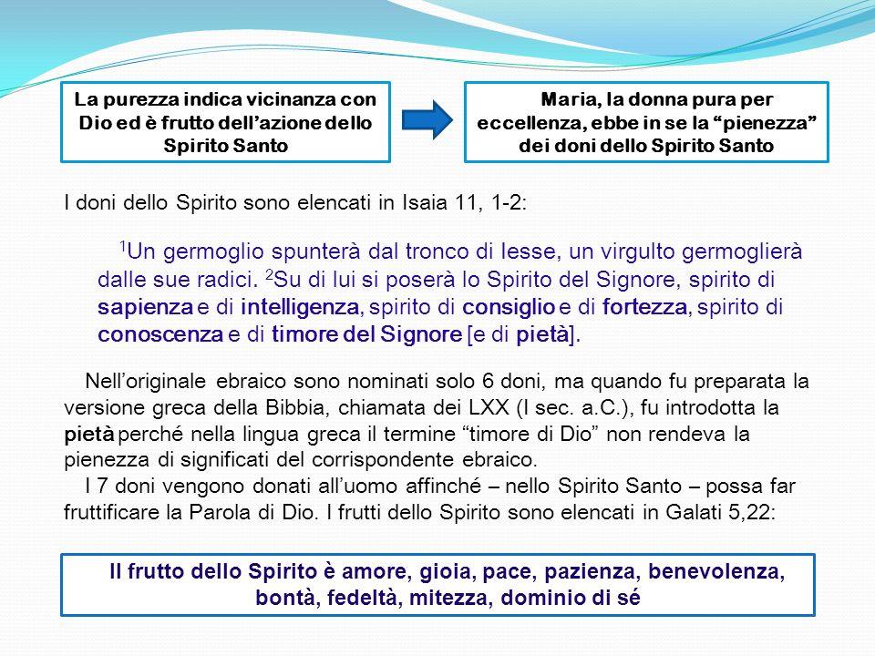 La purezza indica vicinanza con Dio ed è frutto dell'azione dello Spirito Santo