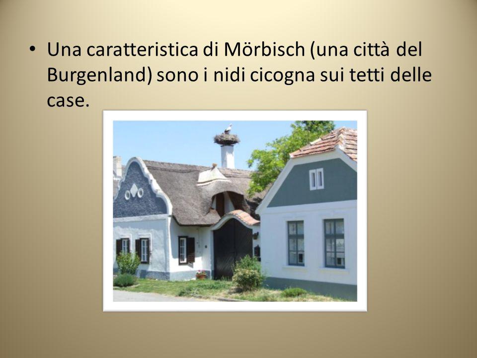 Una caratteristica di Mörbisch (una città del Burgenland) sono i nidi cicogna sui tetti delle case.