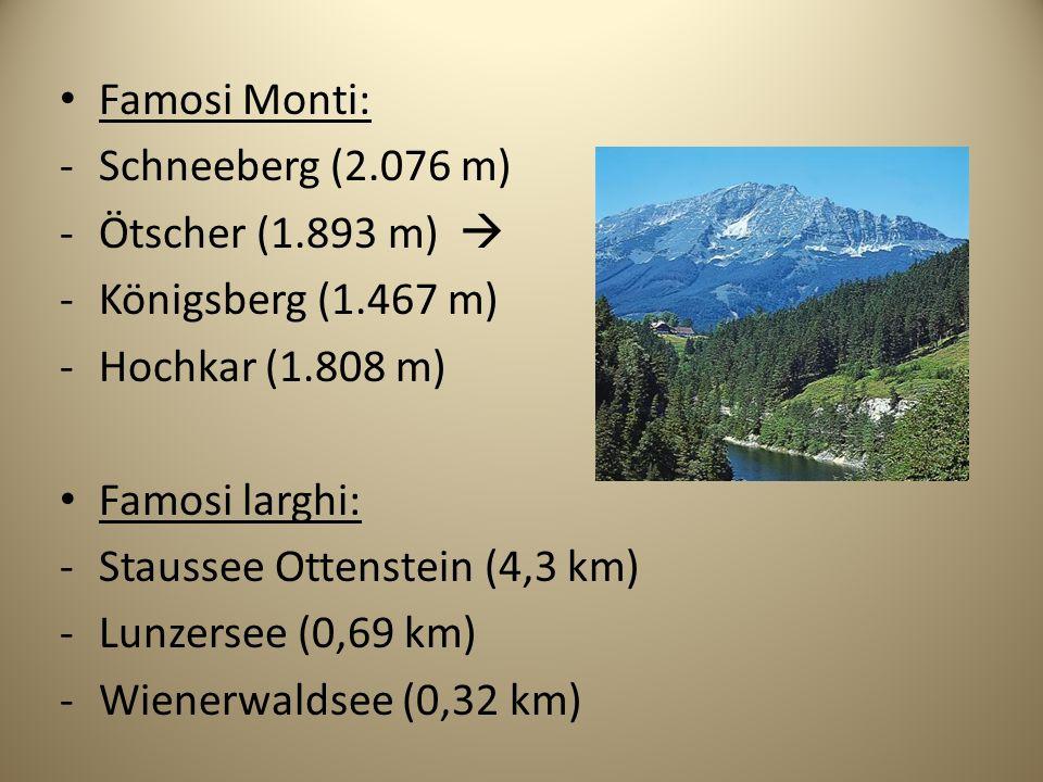 Famosi Monti: Schneeberg (2.076 m) Ötscher (1.893 m)  Königsberg (1.467 m) Hochkar (1.808 m) Famosi larghi: