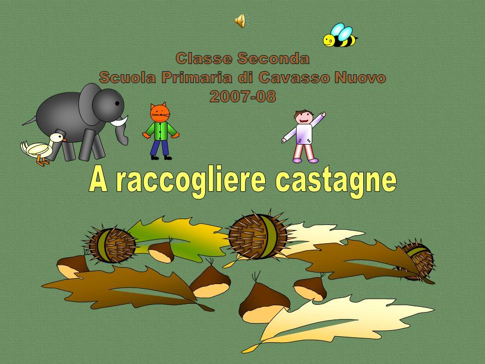A raccogliere castagne ppt scaricare for Raccogliere castagne