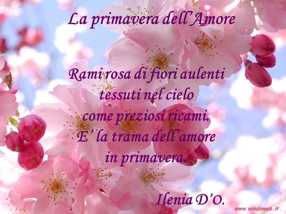 La primavera dell'Amore Rami rosa di fiori aulenti