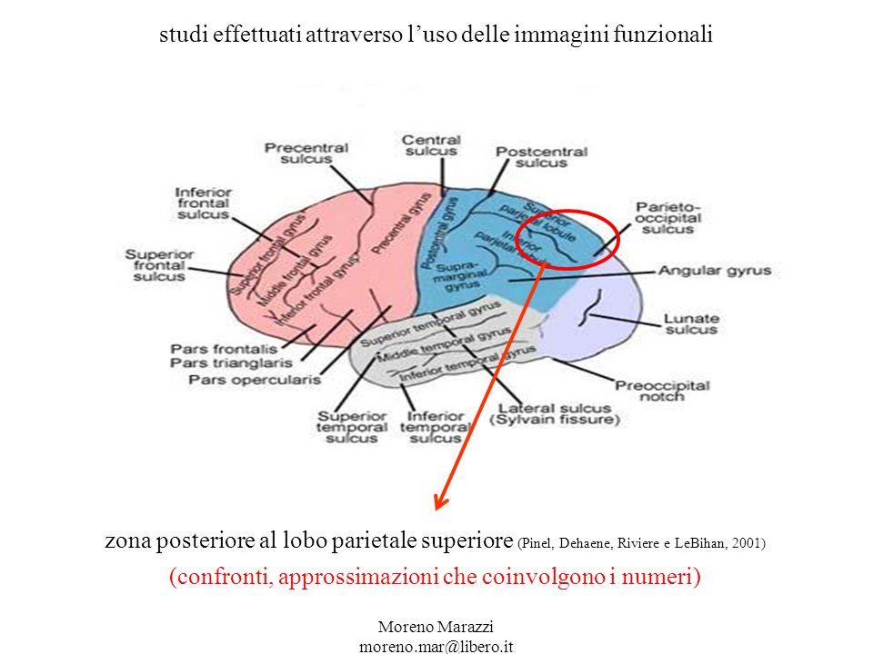 studi effettuati attraverso l'uso delle immagini funzionali