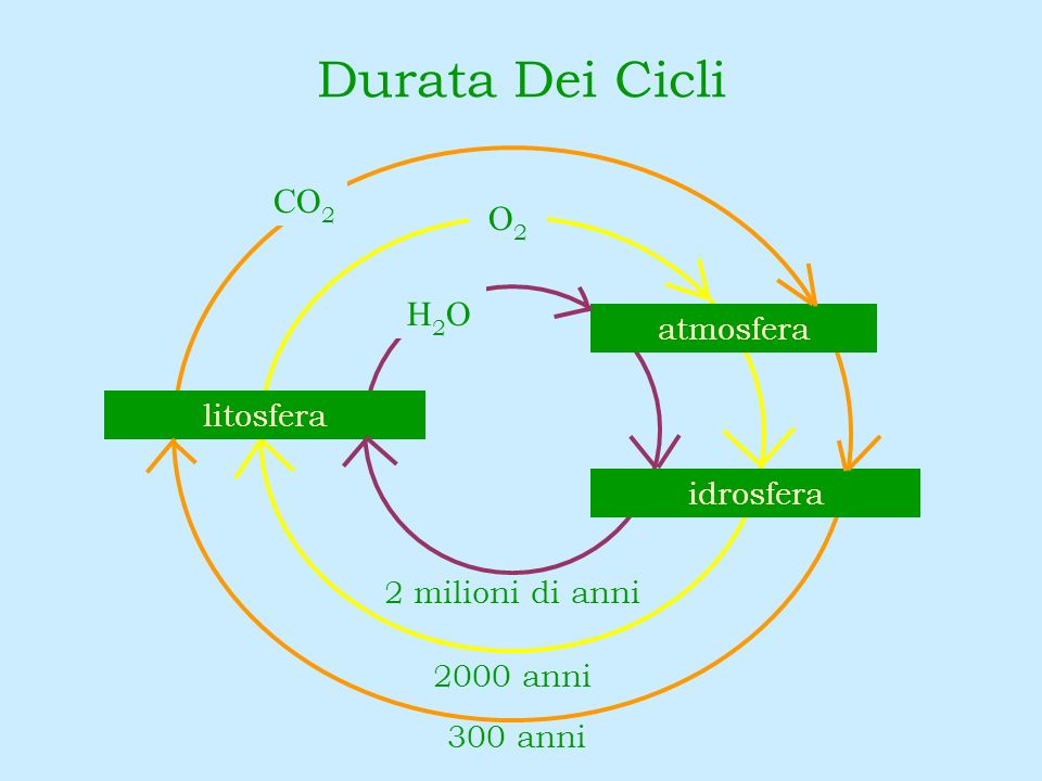 Durata Dei Cicli CO2 O2 H2O atmosfera litosfera idrosfera