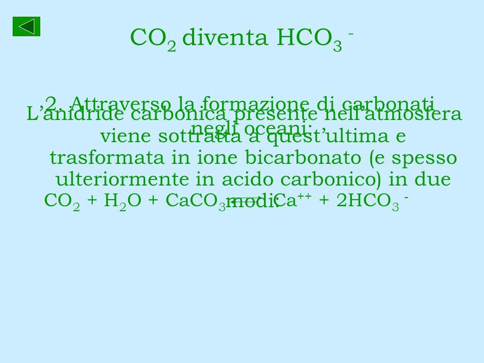 2. Attraverso la formazione di carbonati negli oceani: