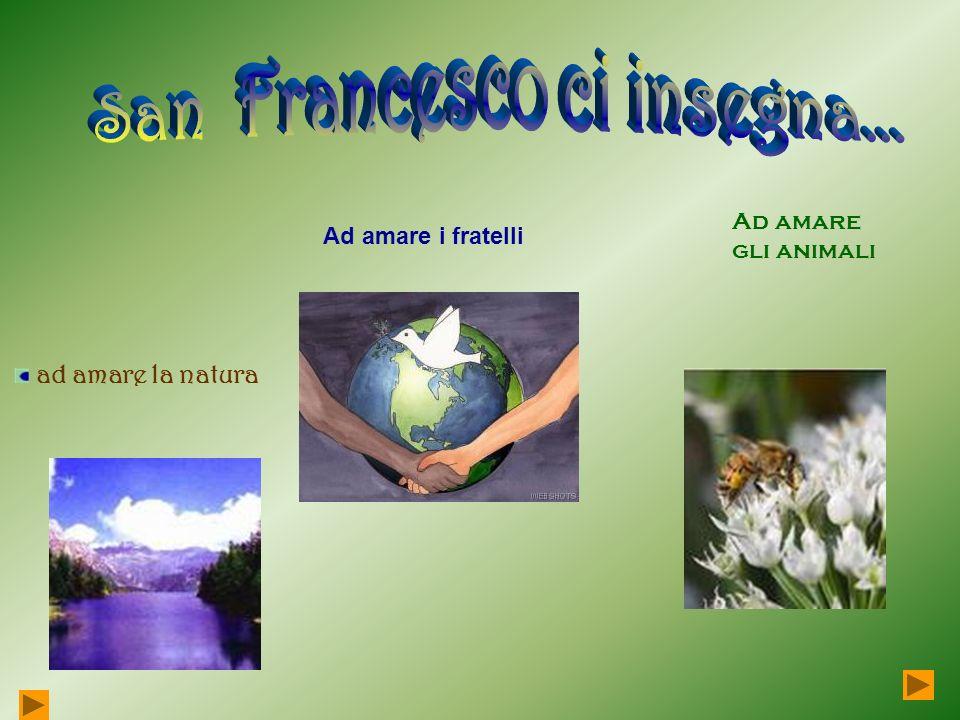 San Francesco ci insegna...