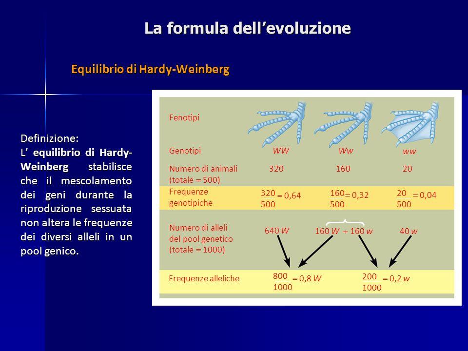 La formula dell'evoluzione