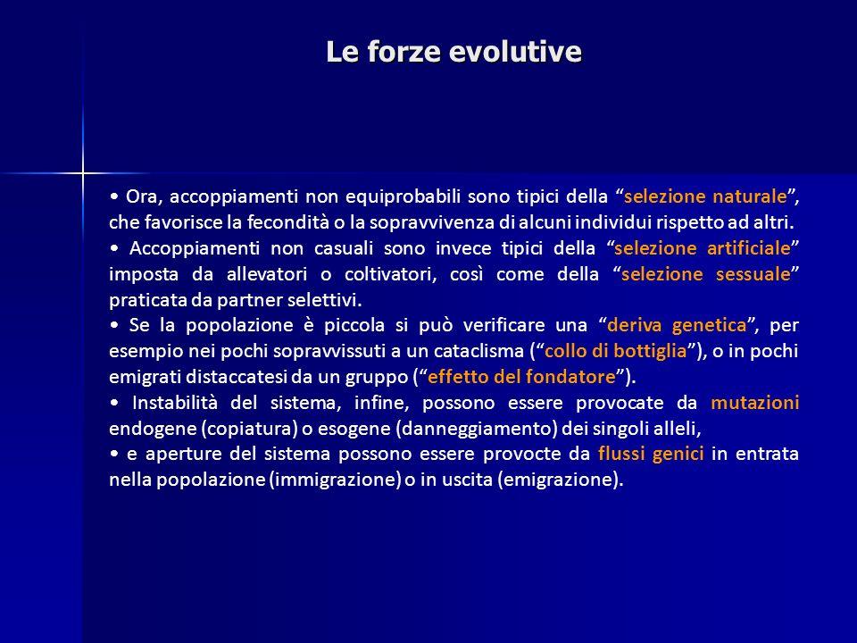 Le forze evolutive