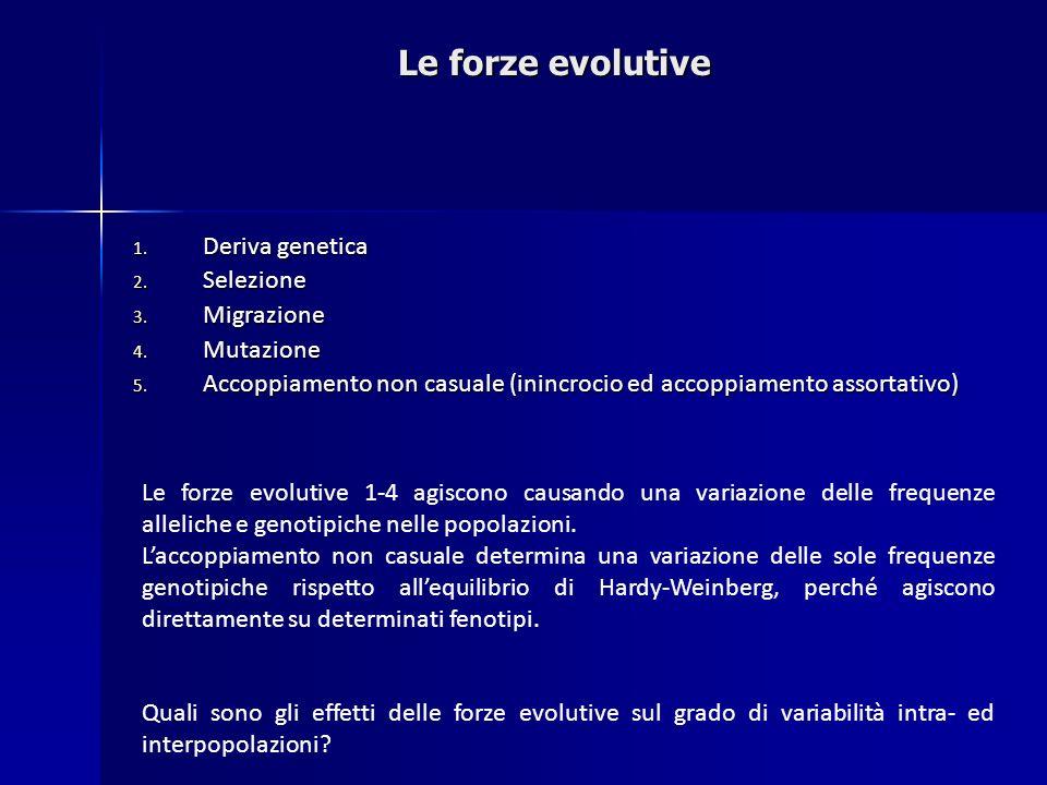 Le forze evolutive Deriva genetica Selezione Migrazione Mutazione
