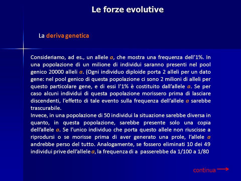 Le forze evolutive La deriva genetica
