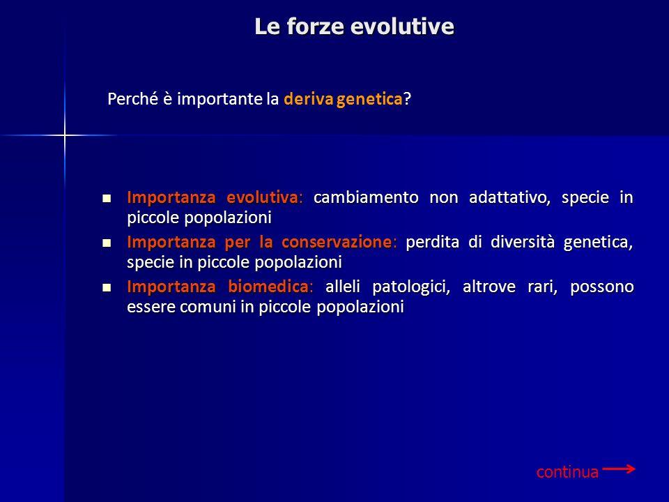 Le forze evolutive Perché è importante la deriva genetica