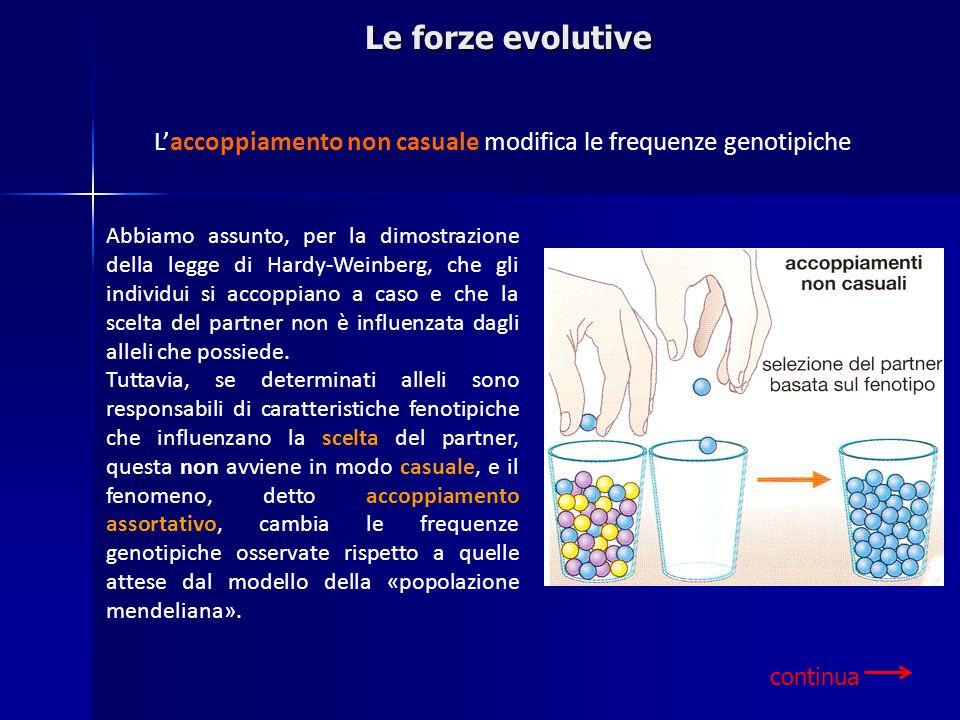 Le forze evolutiveL'accoppiamento non casuale modifica le frequenze genotipiche.