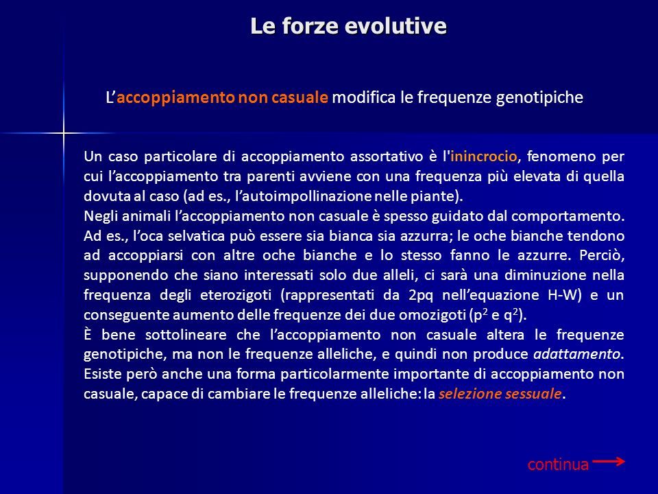 Le forze evolutive L'accoppiamento non casuale modifica le frequenze genotipiche.