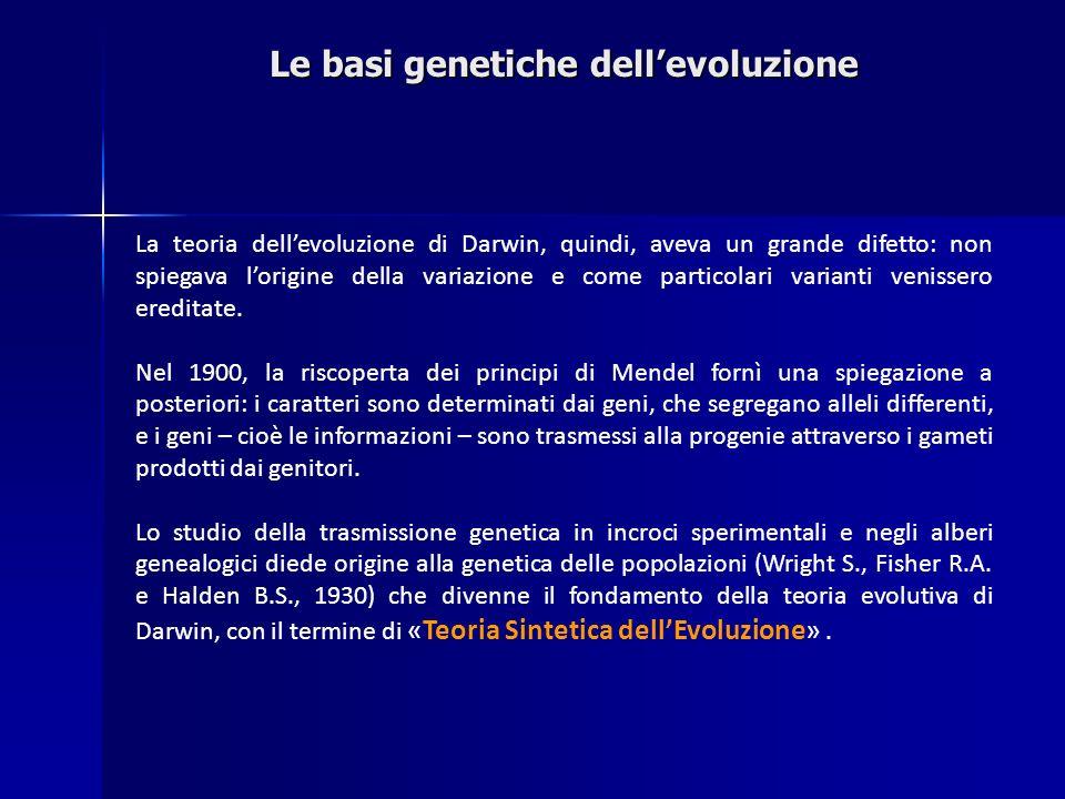 Le basi genetiche dell'evoluzione