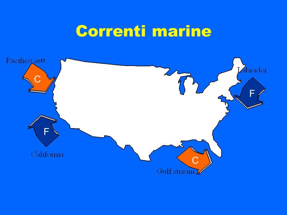 Correnti marine C. F. F.
