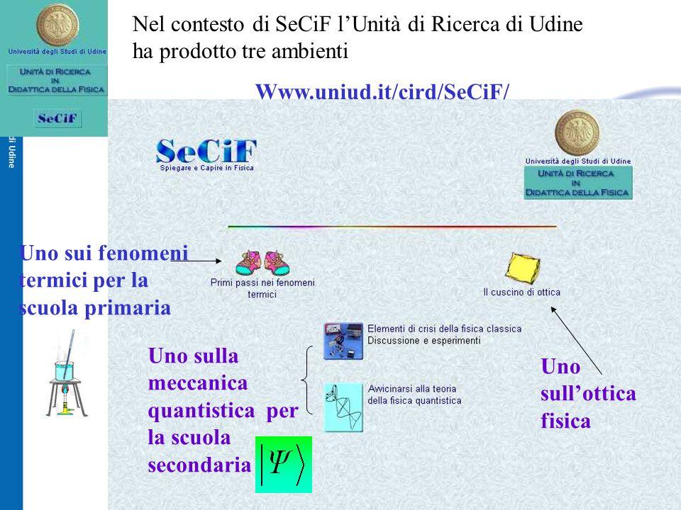 Nel contesto di SeCiF l'Unità di Ricerca di Udine