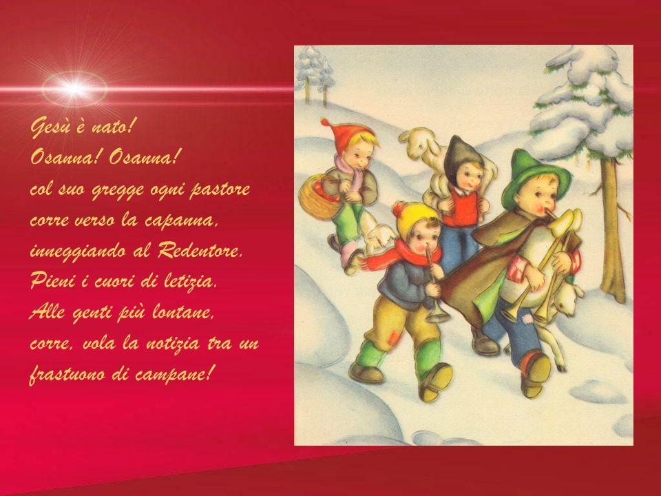 Gesù è nato! Osanna! Osanna! col suo gregge ogni pastore. corre verso la capanna, inneggiando al Redentore.