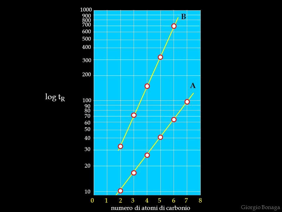 numero di atomi di carbonio
