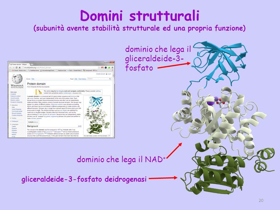 (subunità avente stabilità strutturale ed una propria funzione)