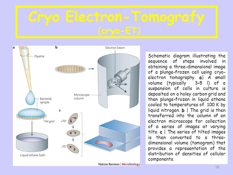Cryo Electron-Tomografy