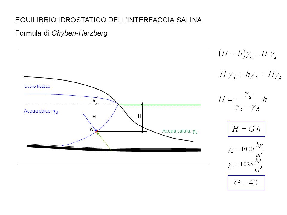 EQUILIBRIO IDROSTATICO DELL'INTERFACCIA SALINA