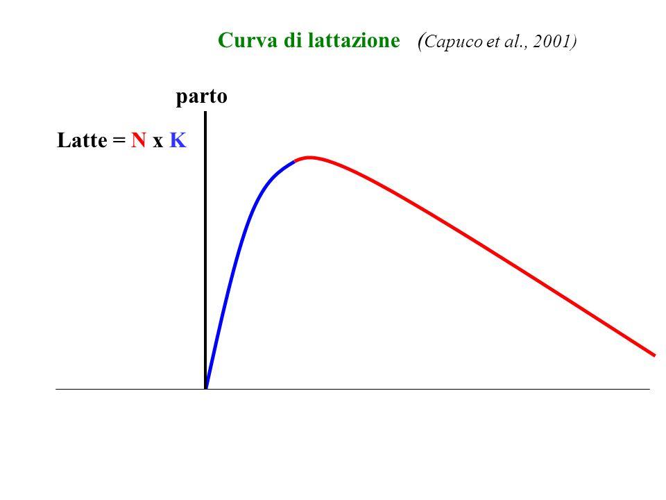 Curva di lattazione (Capuco et al., 2001) parto Latte = N x K